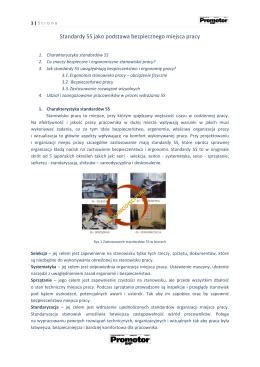Standardy 5S jako podstawa bezpiecznego miejsca pracy