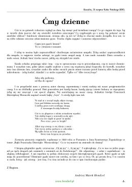 Ćmy dzienne pdf - 66 KB