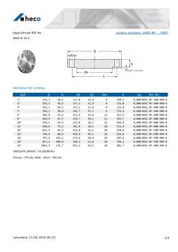slepá příruba 900 lbs ANSI B 16.5