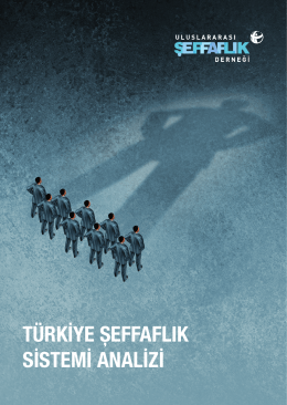 türkiye şeffaflık sistemi analizi