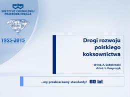 Drogi rozwoju polskiego koksownictwa