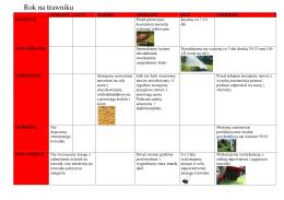 Rok na trawniku - koszenie, nawadnianie, nawożenie, ochrona, inne