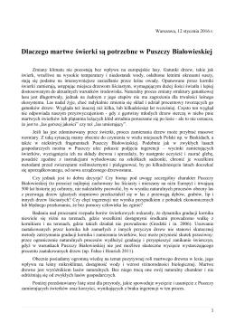 Dlaczego martwe świerki są potrzebne w Puszczy Białowieskiej