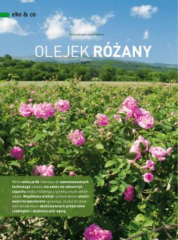 """Beauty Forum nr 12, 2014 """" Olejek różany"""""""