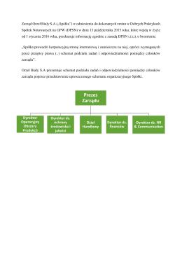 Schemat podziału zadań i odpowiedzialności