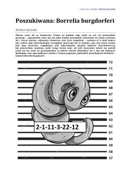 Poszukiwana: Borrelia burgdorferi