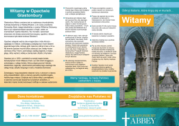 Witamy - Glastonbury Abbey