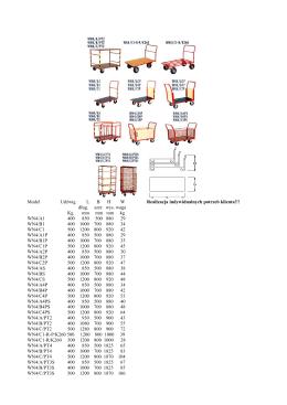 Model Udźwig LBHW Realizacja indywidualnych