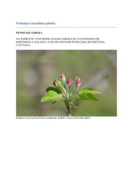Zelena prognoza 07042016