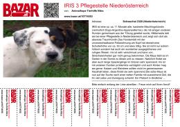 IRIS 3 Pflegestelle Niederösterreich