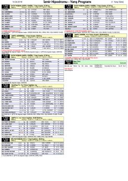 Özet PDF Programı