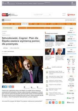 Sztuczkowski, Cognor: Plan dla Śląska zawiera