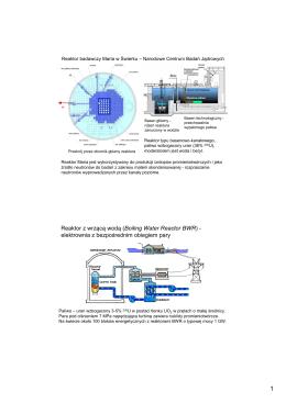 Reaktor z wrzącą wodą ( Boiling Water Reactor BWR