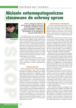 Nicienie entomopatogeniczne stosowane do ochrony upraw