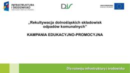 Prezentacja DIS vivIDEA Kampania edukacyjno