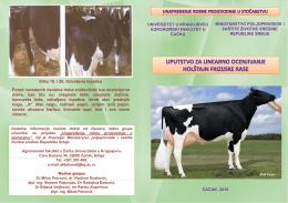 Govedarstvo-Holstajn rasa