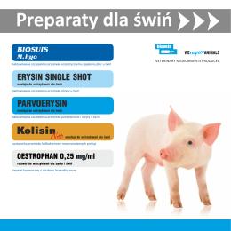 Szczepionki dla świ