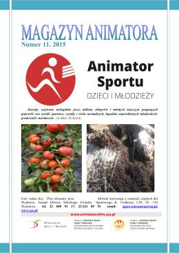 Numer 11. 2015 - Animator Sportu Dzieci i Młodzieży
