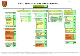 Schemat organizacyjny w postaci graficzej