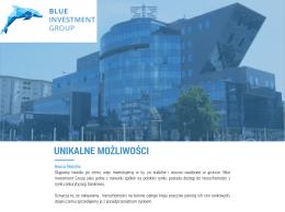 Blue Investment Group - poznaj nas, pobierz prezentację (plik PDF).