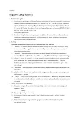 Projekt regulaminu usług view2surftm