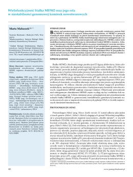 Wielofunkcyjność białka MDM2 oraz jego rola w niestabilności