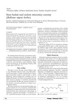 Stan badań nad zielem mierznicy czarnej (Ballotae nigrae herba)