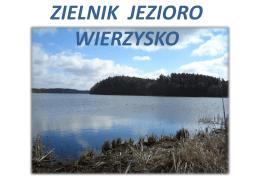ZIELNIK JEZIORO WIERZYSKO