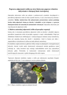 Poprawa odporności roślin na stres biotyczny poprzez