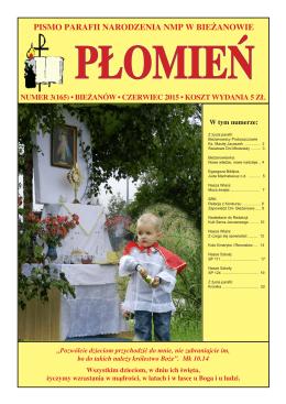 3/165 - Parafia Narodzenia NMP w Krakowie - diecezja