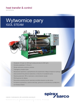 IGOL STEAM Wytwornice pary
