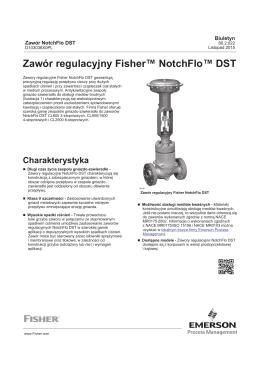 Zawór regulacyjny Fisher™ NotchFlo™ DST