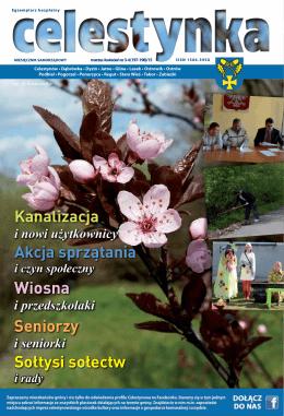 Wiosna - Celestynów, Urząd Gminy