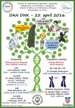 DAN DNK - IMGGI