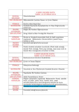 4. sınıf İşlenen Ders Porgramı