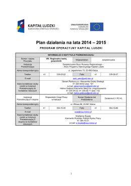 Plan działania na rok 2014 dla Priorytetu VIII