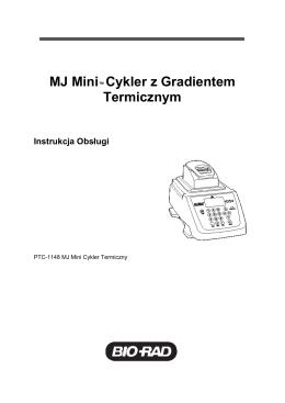 MJ Mini