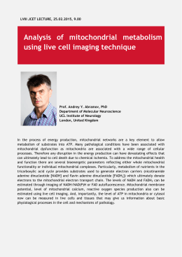 Analysis of mitochondrial metabolism using live cell imaging