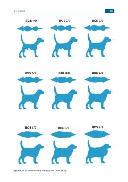 3.4 Energia Rycina 3.4 Punktowa ocena kondycji psa i kota (BCS).
