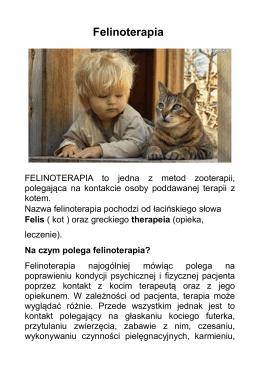 Felinoterapia