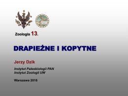Zoologia 13