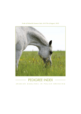 PEDIGREE INDEX - arabian horse days
