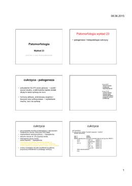 Patomorfologia Patomorfologia wykład 23 cukrzyca