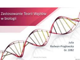 Julia Radwan-Pragłowska, zastosowanie teorii węzłów w biologii