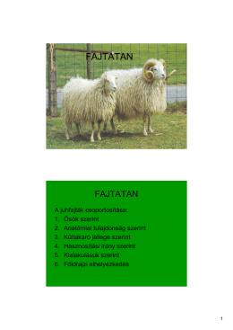 FAJTATAN 1