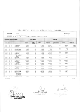 Tablo 1.10 Bütçe Giderleri ve Ödenekleri Tablosu