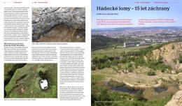 Tištěná verze článku v pdf