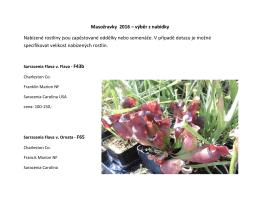 Masožravky 2016 – výběr z nabídky Nabízené rostliny jsou