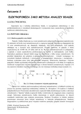 biochemia ćwiczenie 2 wersja 2014-2015