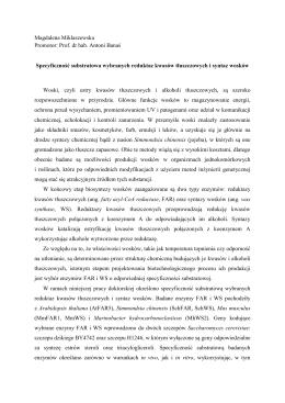 Magdalena Miklaszewska Promotor: Prof. dr hab. Antoni Banaś